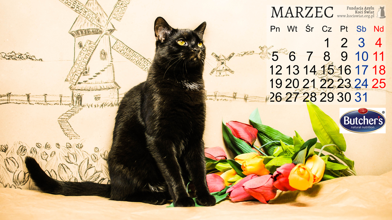 Rozmruczany kalendarz marzec 2018